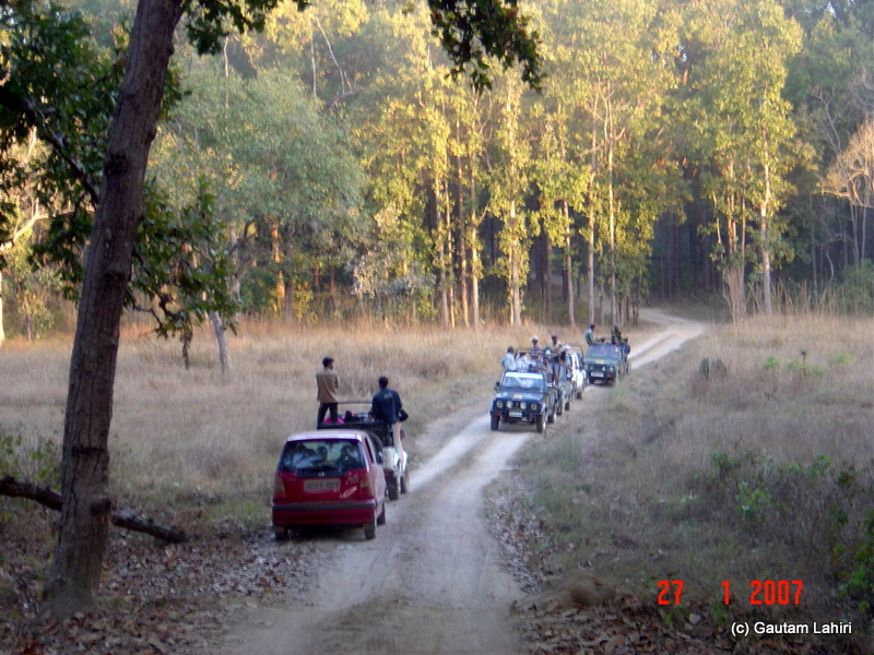 The last leg of our Kanha tour as we met other vehicles who were returning or making their way to explore Kanha. If I had the steering wheel under my control, perhaps I would have made a U-turn to disappear back into the wild at Kanha forest by Gautam Lahiri
