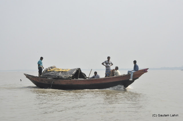 A boat moves at a speed alongside our steamer to take its ailing passenger, a calf  to a veterinarian at Gadiara, Hooghly, West Bengal, India by Gautam Lahiri