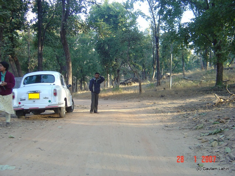 Ambassador awaits on the Kanha's dirt track with its nose towards the Kisli gate entry through which we catapulted our way to Pench near Kanha forest by Gautam Lahiri