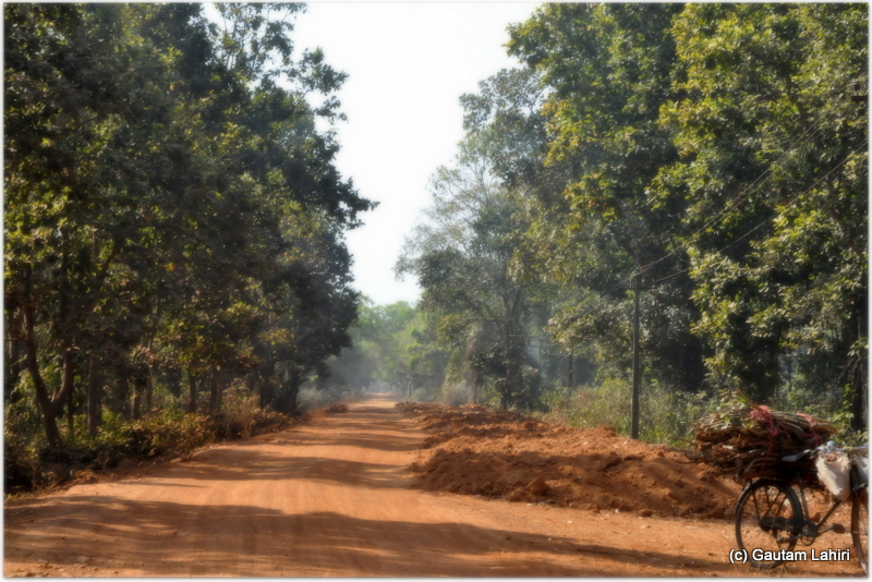 The road to the airfield was uneven, dusty and remote. The dense jungle made us think that an elephant may be seen grazing, we pressed on with a prospect of encountering one at Joypur jungle, Bankura by Gautam Lahiri