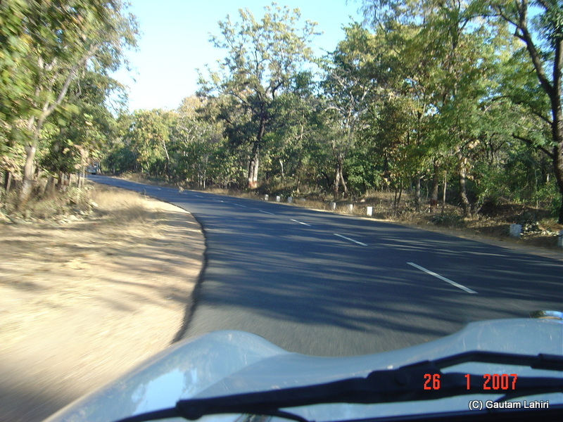 The Ambassador skirting the sides of the road as she flew over the road through Pench forest section towards Kanha forest reserve by Gautam Lahiri