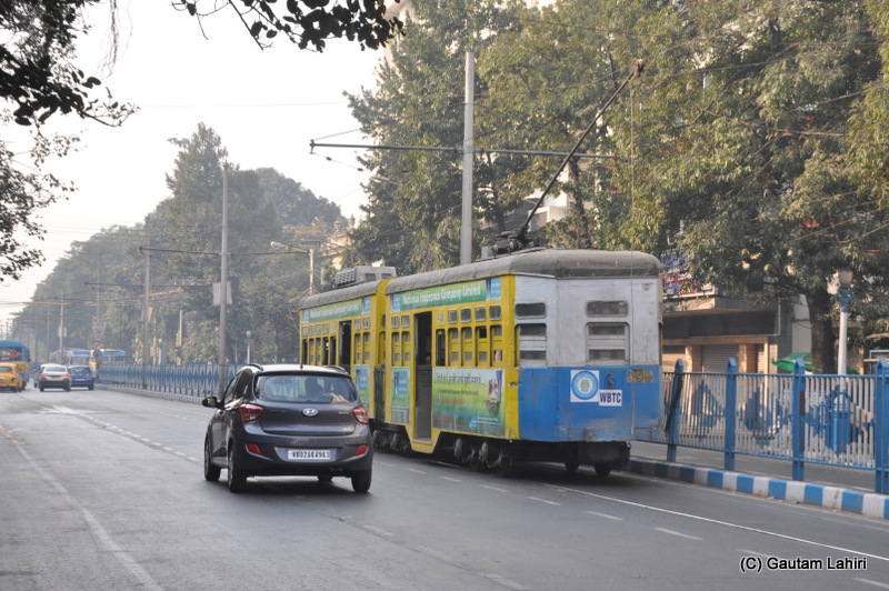 A Calcutta Tramways tram on Rashbehari Avenue, Kolkata, West Bengal, India by Gautam Lahiri