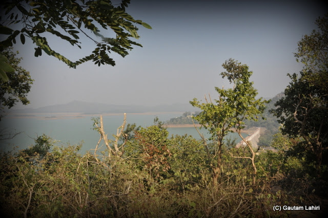 Hill top view of the lake through the trees  at Massanjore, Jharkhand, India by Gautam Lahiri