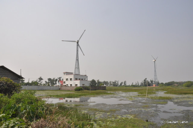 Wind mills at Henry Island, Bakkhali beach, West Bengal, India near Bay of Bengal by Gautam Lahiri
