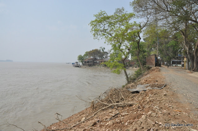 Brown soil, dry branches, and loosely packed small rock pieces littered the river bank at Gadiara, Hooghly, West Bengal, India by Gautam Lahiri