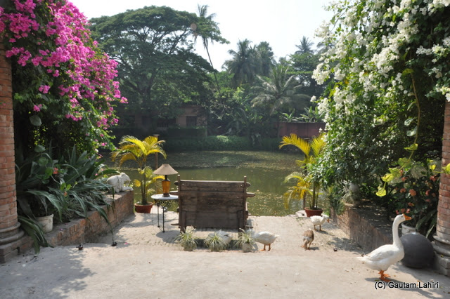 Flowered plants on either side the steps that lead to the pond. A scattering of geese moved about the water at Bawali Rajbari, Kolkata, West Bengal, India by Gautam Lahiri