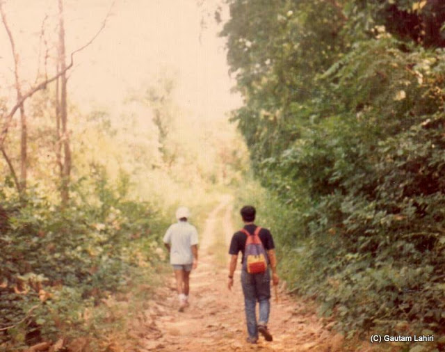 Walking through the jungles of Betla forest reserve, Jharkhand, India by Gautam Lahiri