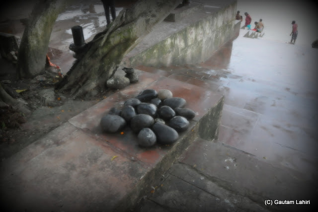 Stones kept in an order under a Peepal tree, to worship Shiva at Kolkata, West Bengal, India by Gautam Lahiri