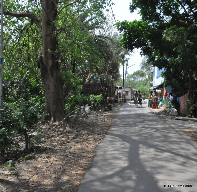 Numerous slender roads of Taki that can be seen woven across the town. Driving a car was quite difficult as the rickshaws that travel along refuse to give way to any other vehicle at Taki, West Bengal, India by Gautam Lahiri