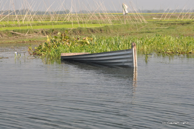 A small boat entirely made of metal tin floating aimlessly used by the nearby fishermen in Purbasthali by Gautam Lahiri