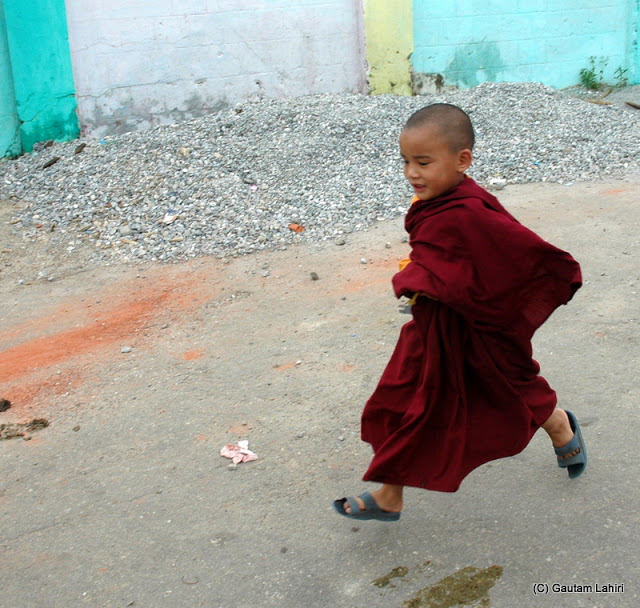 A little lama boy from the monastery was playing cricket as we visited  at Darjeeling, West Bengal, India by Gautam Lahiri
