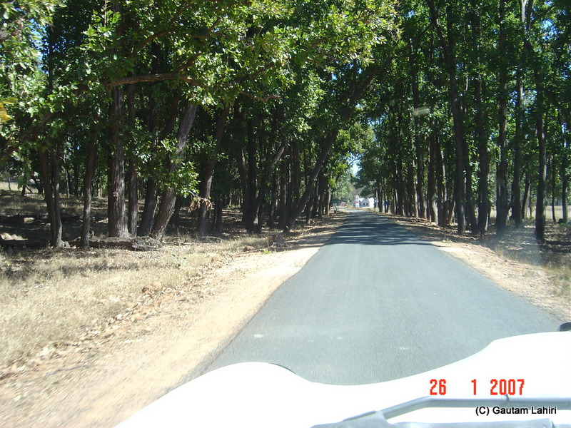 Driving the final stretch into Kisli entry gate as we eat kilometers into Kanha wild life sanctuary by Gautam Lahiri