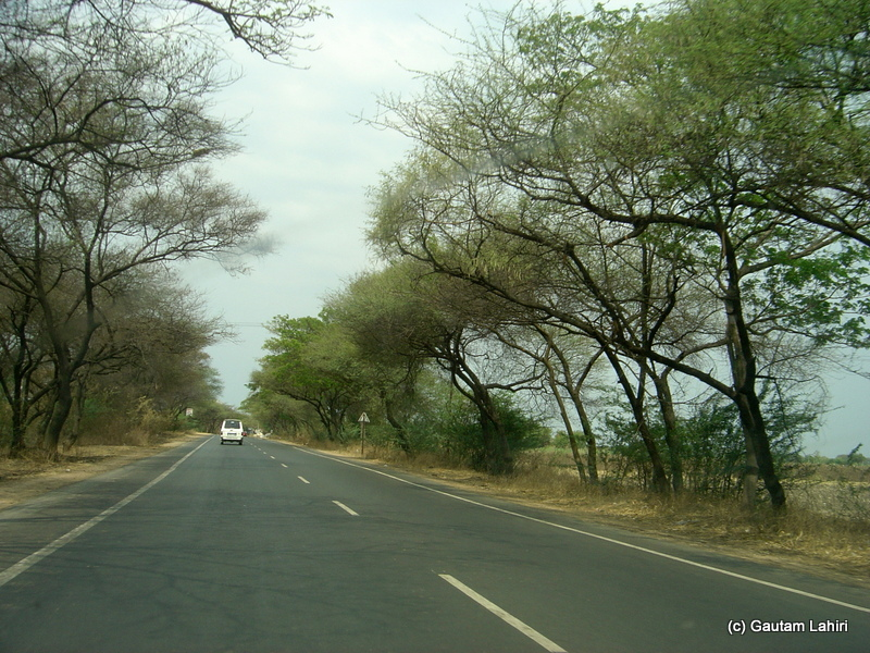 Bent to an angle over the carpet smooth road, the rows of dry deciduous trees lined the NH 65, formed dynamic grey and black patterns of shadows as we sped towards Bidar by Gautam Lahiri