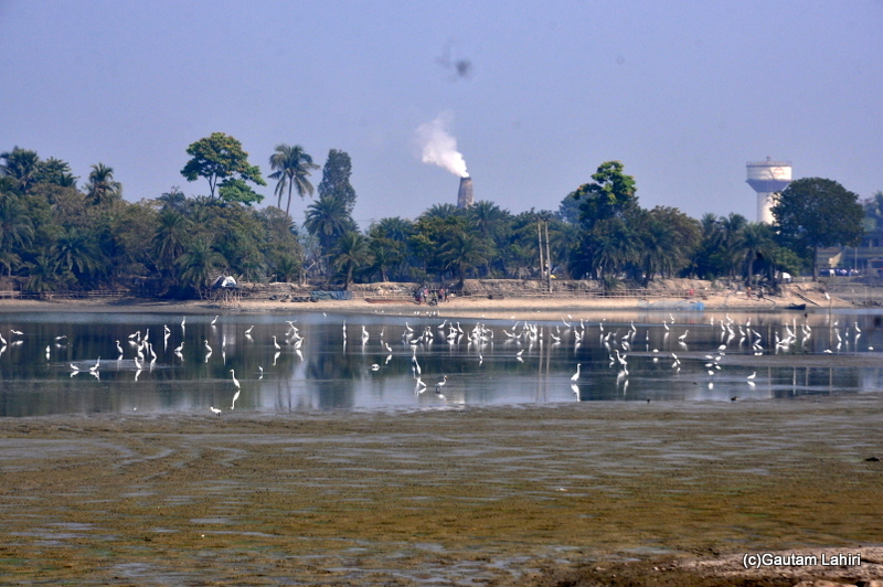 Brick kilns and water lakes on the road from Kolkata to Chandraketugarh, taken by Gautam Lahiri