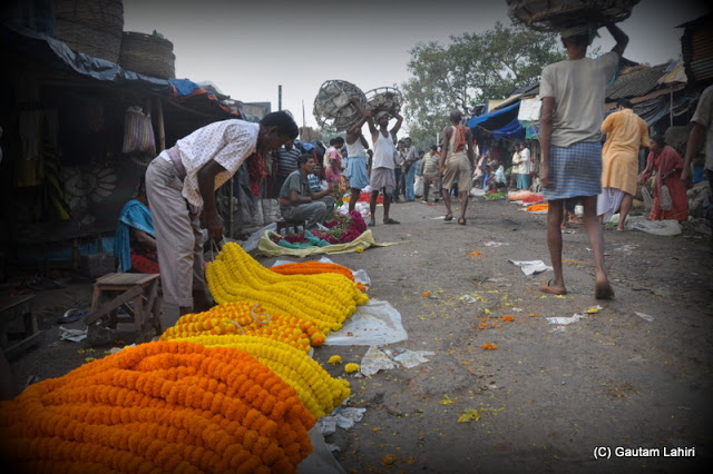 Rolls of Tagetes being kept by sellers to woo customers  at Kolkata, West Bengal, India by Gautam Lahiri