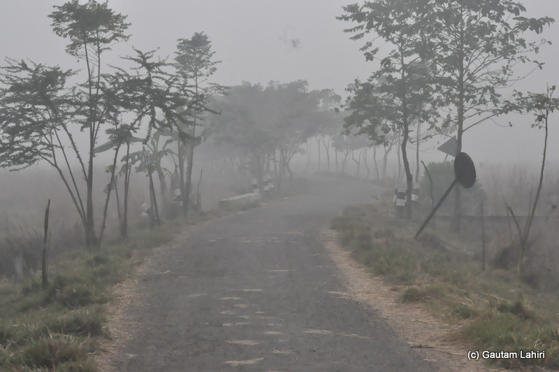 The misty road had unfurled in front of us and asked us to trudge at Bosipota by Gautam Lahiri