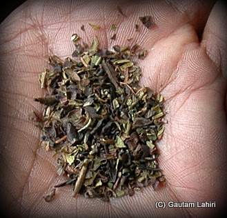 The famous Darjeeling black tea leaves from a nearby stall in the garden. The aroma itself was so good, that we took three cups of it with various combinations of milk, and no milk; the liquor type is very translucent if properly made  at Darjeeling, West Bengal, India by Gautam Lahiri