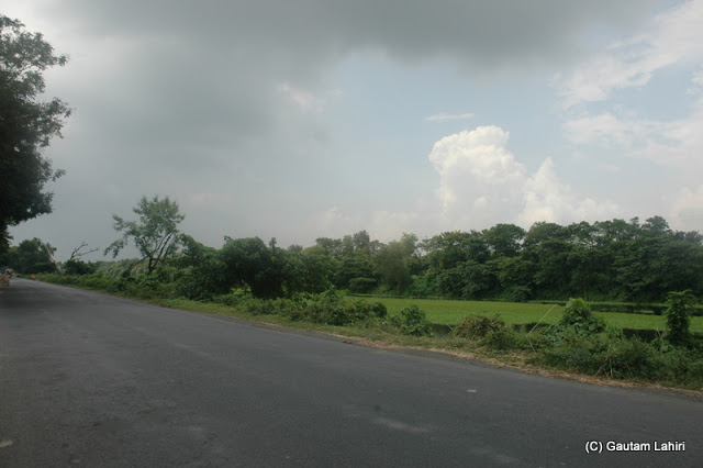 The narrow highway flanked by greenery on either side at Krishnanagar, West Bengal, India by Gautam Lahiri