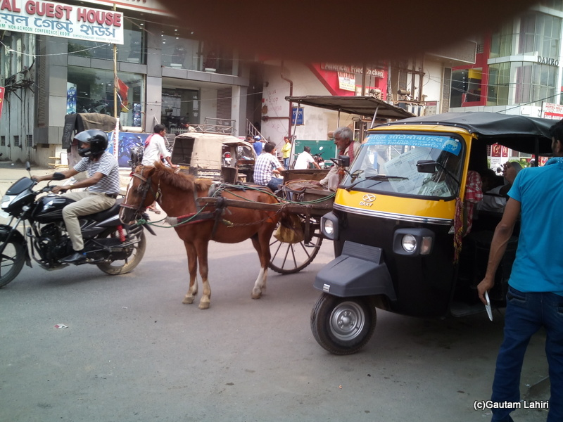 At Gaya, A tanga stood patiently for a customer to hire it. An auto rickshaw too stood beside it to woo customers using speed of travel as its USP by Gautam Lahiri
