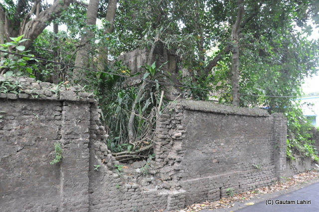 Rajbari perimeter wall in extreme state of disorder cries out for maintenance at Taki, West Bengal, India by Gautam Lahiri