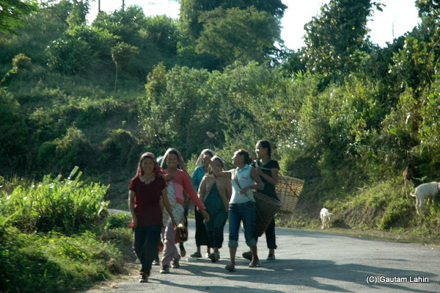 A day for these tea garden women workers coming to an end as we were driving home  at Darjeeling, West Bengal, India by Gautam Lahiri