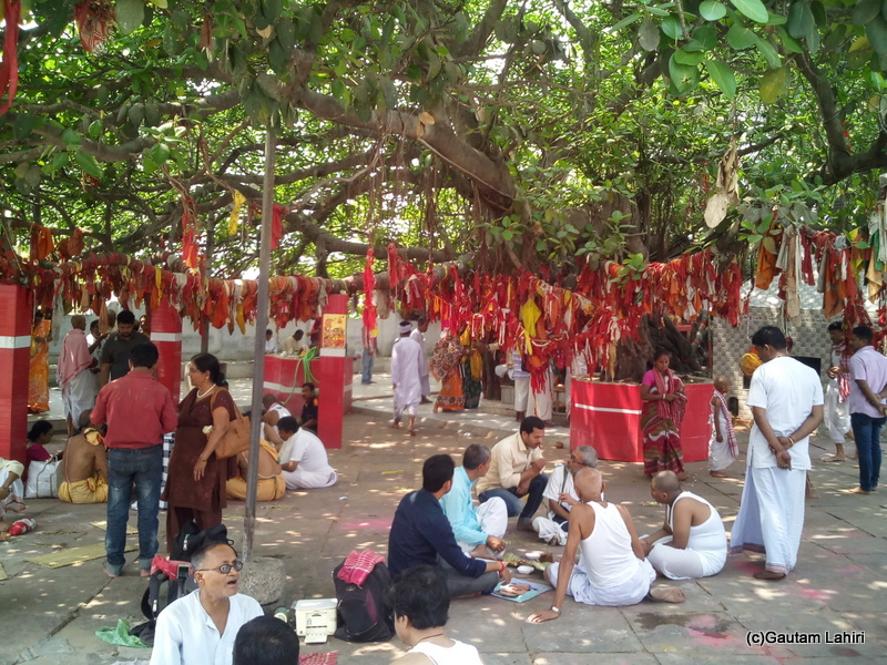 At Gaya, Pilgrims huddled up around the peepal tree where they carried out the last puja. The red clothes that hung from the branches indicated the pujas performed and each indicated a soul to be nurtured by this divine place by Gautam Lahiri
